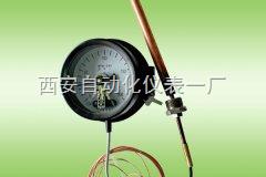 电接点压力式温度计WTQ-288