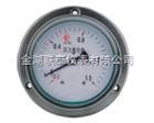 LT厂家供应不锈钢压力表