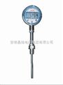 WZP-430-PT100(高精度)数显温度计