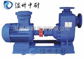 CYZ-A型防爆自吸泵