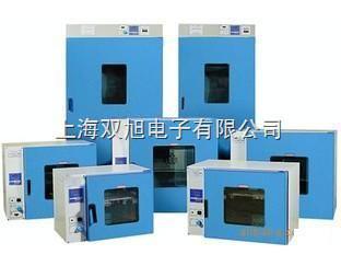 101-2電熱鼓風干燥箱101-2