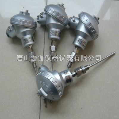 现货低价WRNK-138铠装热电偶