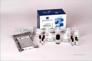大鼠白介素6进口ELISA试剂盒