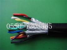 DJFFP3R1*3*1.0计算机电缆