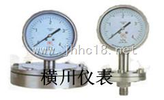 卡箍连接卫生型压力表,卡箍连接卫生型压力表厂家