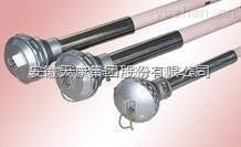 WRPK-131,WRPK-130高温热电偶 天康热电偶