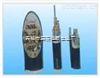 安徽天康PTYA、PTYA23、PTYA22、PTY23、PTY22、PTY03、PTYAH23铁路信号电缆