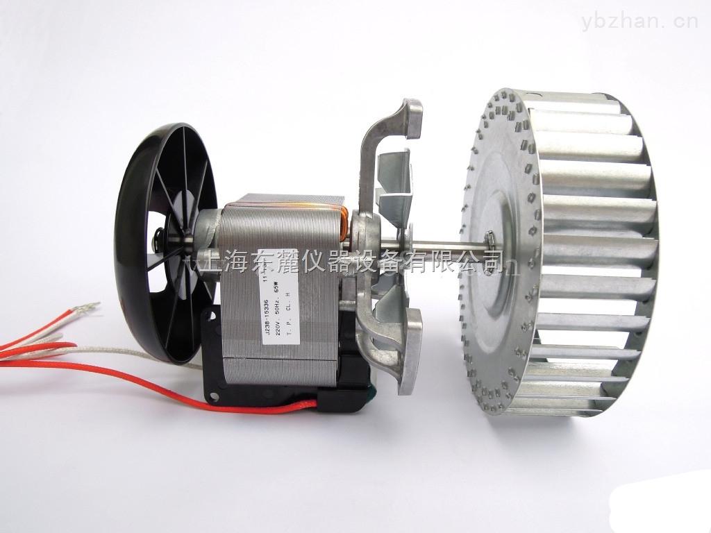 J238-15336-大型立式恒温高温干燥箱专用马达J238-15336高温电机