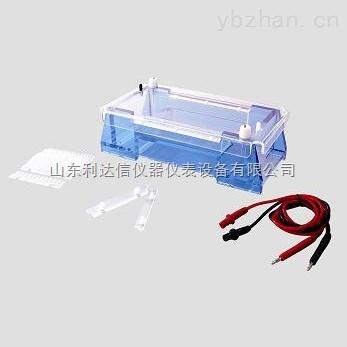 LDX-BLY-DYCP-32A-瓊脂糖水平電泳儀/瓊脂糖水平電泳槽