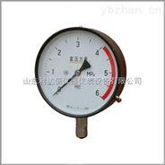 氨用壓力表/氨用壓力表/壓力表