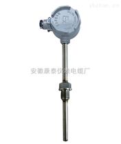 WZPWZP2-240G固定螺纹防爆热电阻