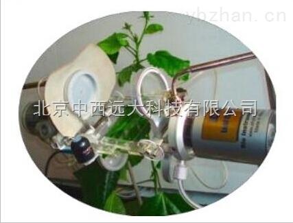 植物光合生理及环境
