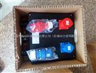 BXX8030-2/16防爆防腐电源插座箱/防水防尘防腐防爆电源插座箱