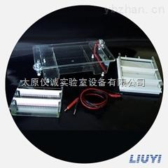 北京六一电泳仪全部型号供应DYZC-
