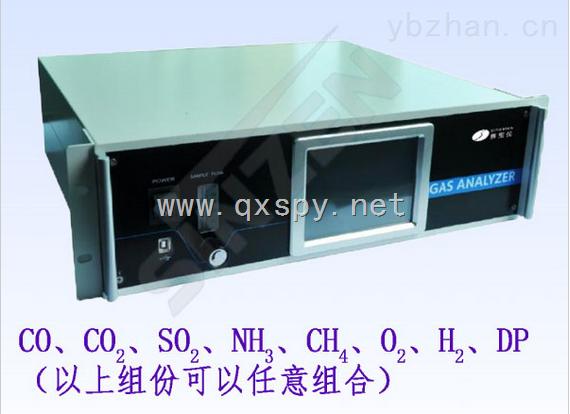 上海气相色谱仪SP-100系列多组分气体分析仪