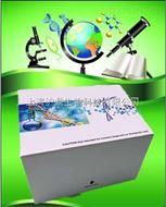 酶联免疫试剂盒技术指导