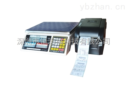 ALH-带打印功能磅秤,高精度电子秤量程精度可选
