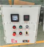 電位器儀表防爆控制箱
