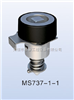MS737-1-1電柜鎖