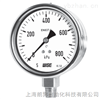 WISE P253过程工业压力表